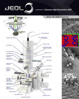 JEOL Field Emission SEM column poster